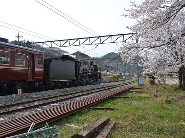 秩父2012春