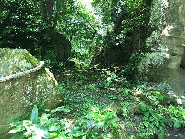 明月院(鎌倉あじさい寺)2017年6月